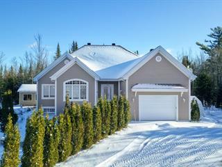Maison à vendre à Saint-Gabriel-de-Brandon, Lanaudière, 18, Chemin du Lac-Hamelin, 12506012 - Centris.ca