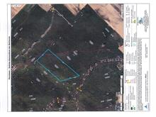 Land for sale in Sainte-Geneviève-de-Batiscan, Mauricie, Rang des Forges, 26720886 - Centris.ca