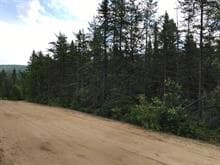Lot for sale in La Malbaie, Capitale-Nationale, Chemin de Grand-Fonds Nord, 25930122 - Centris.ca