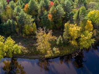 Lot for sale in Mansfield-et-Pontefract, Outaouais, Chemin du Lac Dépôt, 25398788 - Centris.ca