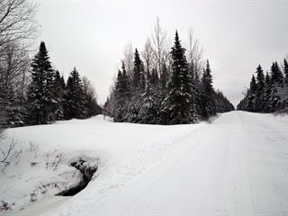 Terre à vendre à Sainte-Cécile-de-Whitton, Estrie, Chemin des Bois, 18986564 - Centris.ca