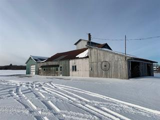 Farm for sale in Valcourt - Canton, Estrie, 6331 - 6333, Chemin  Skiberine, 12636501 - Centris.ca