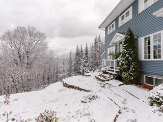 House for sale in Sainte-Anne-des-Lacs, Laurentides, 22, Chemin des Abeilles, 10367126 - Centris.ca