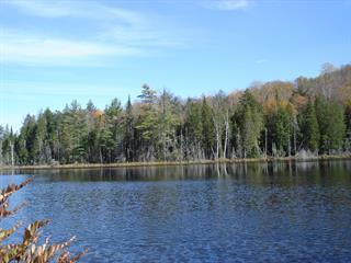 Terre à vendre à Mont-Tremblant, Laurentides, Chemin du Lac-Mercier, 10859679 - Centris.ca