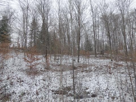 Lot for sale in Harrington, Laurentides, Chemin de la Baie-Campbell, 10885271 - Centris.ca