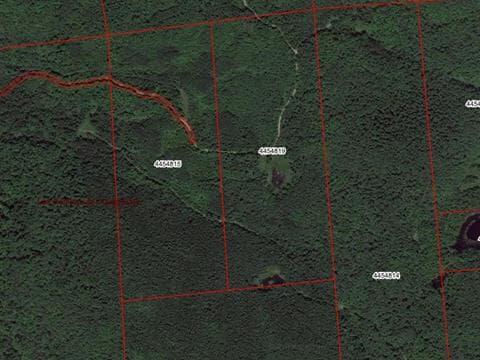 Terre à vendre à La Pêche, Outaouais, 280, Chemin  Hogan, 9284320 - Centris.ca
