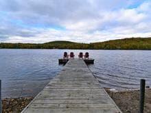 Chalet à vendre à Amherst, Laurentides, 1333, Chemin du Lac-Cameron, 22173848 - Centris.ca