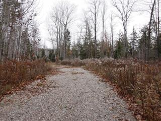 Terrain à vendre à Pontiac, Outaouais, 9388, Chemin du Lac-des-Loups, 28169828 - Centris.ca