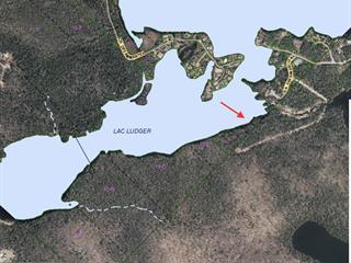 Terrain à vendre à Lantier, Laurentides, Chemin des Dandelions, 24067056 - Centris.ca