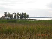 Terrain à vendre à Palmarolle, Abitibi-Témiscamingue, 871, Chemin des Linaigrettes, 27673451 - Centris.ca