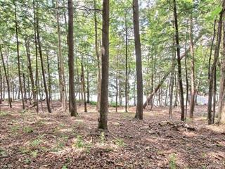 Lot for sale in Saint-Ferdinand, Centre-du-Québec, Route  Domaine du Lac, 22847040 - Centris.ca