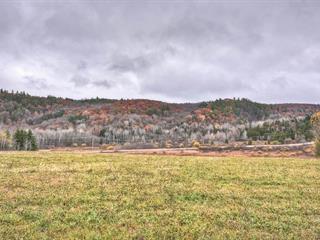 Terre à vendre à Val-des-Monts, Outaouais, 2224, Route  Principale, 11514757 - Centris.ca