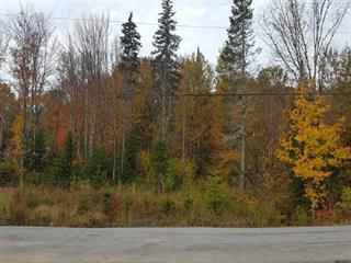 Lot for sale in Lac-Beauport, Capitale-Nationale, Chemin de la Tournée, 25946206 - Centris.ca