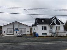 Maison à vendre à Saint-Cyprien (Chaudière-Appalaches), Chaudière-Appalaches, 515, Route de l'Église, 28029277 - Centris.ca