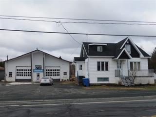 House for sale in Saint-Cyprien (Chaudière-Appalaches), Chaudière-Appalaches, 515, Route de l'Église, 28029277 - Centris.ca