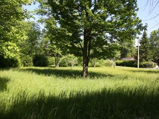 Lot for sale in Saint-Georges-de-Clarenceville, Montérégie, Rue  Country, 22033935 - Centris.ca