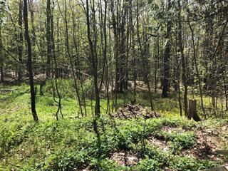Land for sale in Sutton, Montérégie, 693, Chemin  Schweizer, 14408790 - Centris.ca