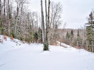 Land for sale in Rawdon, Lanaudière, Chemin du Lac-Brennan, 25698924 - Centris.ca