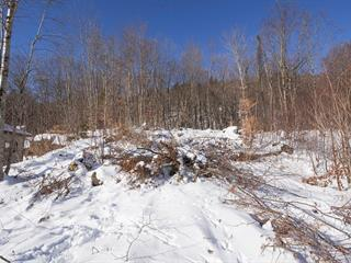 Lot for sale in Sainte-Brigitte-de-Laval, Capitale-Nationale, 155, Rue de Lucerne, 12454117 - Centris.ca