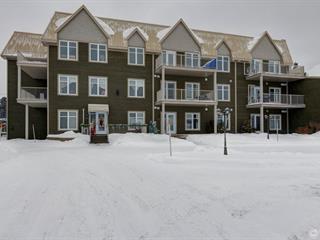Condo for sale in Thetford Mines, Chaudière-Appalaches, 680, Rue  Saint-Alphonse Sud, apt. 113, 17600454 - Centris.ca