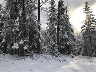 Lot for sale in Val-des-Monts, Outaouais, 54, Chemin du Lac-Clair, 12495160 - Centris.ca