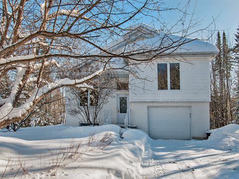 Maison à vendre à Notre-Dame-de-la-Merci, Lanaudière, 3170, Chemin du Lac-du-Castor, 18035350 - Centris.ca