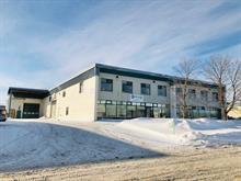Industrial building for sale in Québec (Les Rivières), Capitale-Nationale, 430, Rue  Faraday, 20100457 - Centris.ca