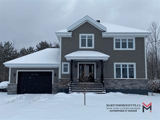 Maison à vendre à Acton Vale, Montérégie, 563, Rue  Pelchat, 24824486 - Centris.ca