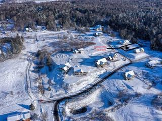 Land for sale in Cowansville, Montérégie, Rue  Édouard-Guité, 28709567 - Centris.ca