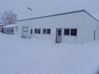 Industrial building for sale in Laurier-Station, Chaudière-Appalaches, 129, Rue de la Chapelle, 9224074 - Centris.ca