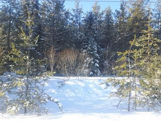 Lot for sale in Saint-Côme, Lanaudière, 32e av. de la Rivière-de-la-Boule, 12728170 - Centris.ca