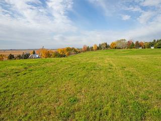 Terre à vendre à Maskinongé, Mauricie, Route du Pied-de-la-Côte, 16199973 - Centris.ca