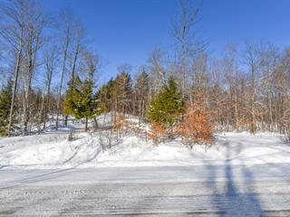 Terrain à vendre à Orford, Estrie, Chemin des Osmondes, 26016501 - Centris.ca