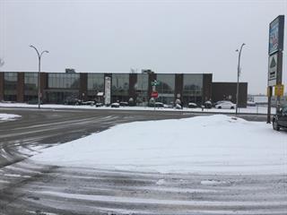 Local industriel à vendre à Montréal (Saint-Léonard), Montréal (Île), 8645, boulevard  Langelier, 18407764 - Centris.ca