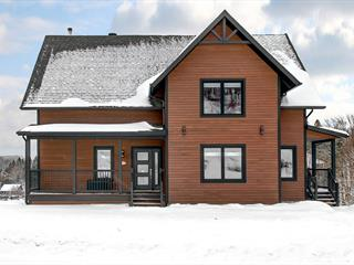 House for sale in Lac-Beauport, Capitale-Nationale, 8, Chemin du Grand-Bornand, 28523542 - Centris.ca