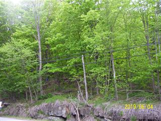 Lot for sale in Chelsea, Outaouais, 863, Route  105, 9108767 - Centris.ca
