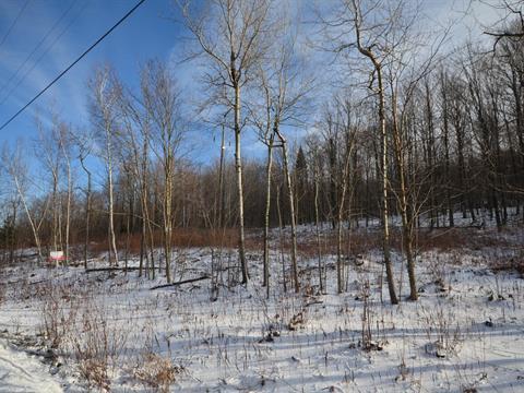 Terrain à vendre à Stukely-Sud, Estrie, Chemin  Robert-Savage, 15566258 - Centris.ca