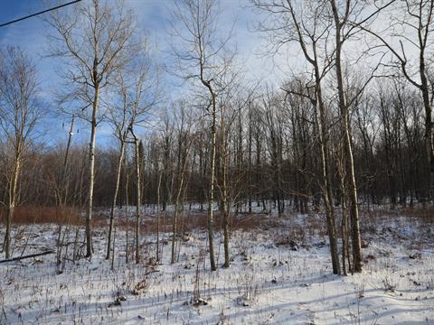 Terrain à vendre à Stukely-Sud, Estrie, Chemin  Robert-Savage, 26613163 - Centris.ca