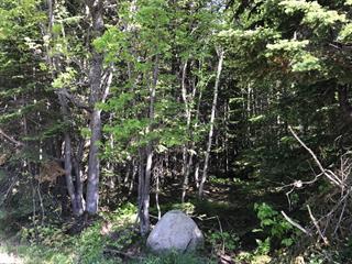 Lot for sale in Petite-Rivière-Saint-François, Capitale-Nationale, Chemin du Fief, 27747209 - Centris.ca