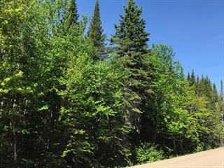 Terrain à vendre à Petite-Rivière-Saint-François, Capitale-Nationale, Chemin du Fief, 20546406 - Centris.ca