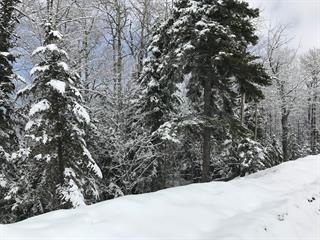 Terrain à vendre à Petite-Rivière-Saint-François, Capitale-Nationale, Chemin des Voitures-d'Eau, 10229080 - Centris.ca