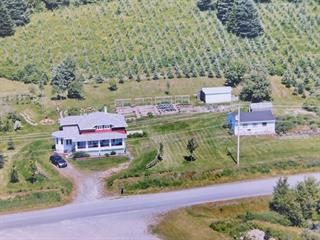 House for sale in Lac-Etchemin, Chaudière-Appalaches, 460, Rue du Détour, 20515734 - Centris.ca