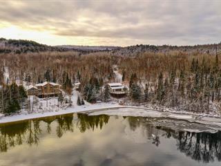 Chalet à vendre à Duhamel, Outaouais, 3930, Chemin du Lac-Gagnon Ouest, 27622419 - Centris.ca
