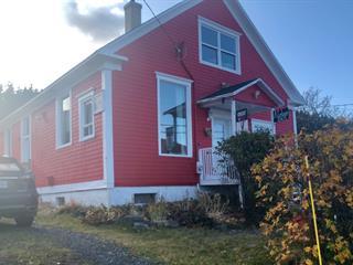 House for sale in Saint-Maxime-du-Mont-Louis, Gaspésie/Îles-de-la-Madeleine, 43, 1re Avenue Ouest, 23816265 - Centris.ca