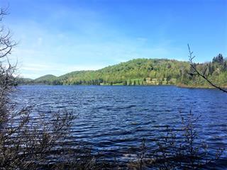 Terrain à vendre à Ivry-sur-le-Lac, Laurentides, Chemin  A.-Bicari, 9147455 - Centris.ca