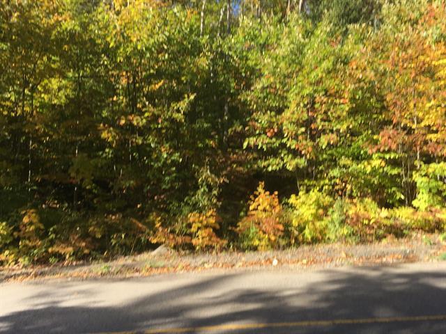 Terrain à vendre à Sainte-Adèle, Laurentides, boulevard  Mont-Rolland, 16772421 - Centris.ca