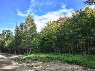 Lot for sale in Sainte-Béatrix, Lanaudière, Rue des Fougères, 17232409 - Centris.ca