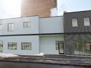 Bâtisse commerciale à louer à Montréal (Ville-Marie), Montréal (Île), 1456, Rue  Saint-Mathieu, 11538400 - Centris.ca
