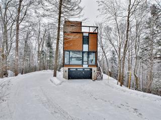 Maison à vendre à Saint-Adolphe-d'Howard, Laurentides, 18, Chemin  Ora, 25616954 - Centris.ca
