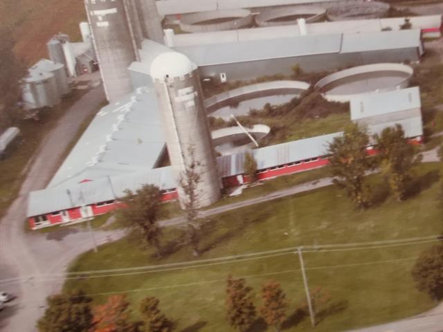 Farm for sale in Montmagny, Chaudière-Appalaches, 461, Montée de la Rivière-du-Sud, 17690866 - Centris.ca
